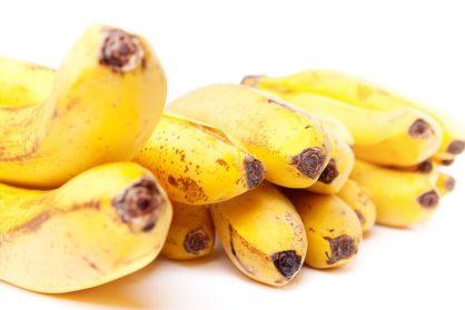 Freche Früchtchen Teil 4 – Bananen 🍌